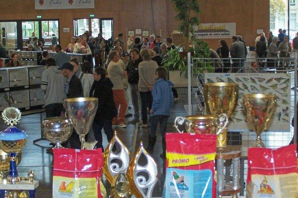 Exposition de l'Onitho Club de Calais