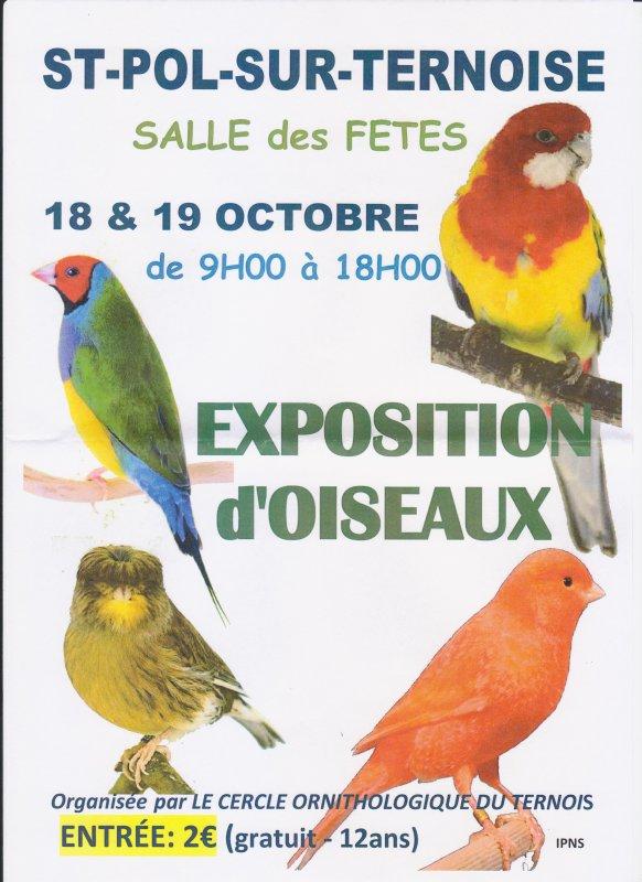 Cercle Ornithologique du Ternois
