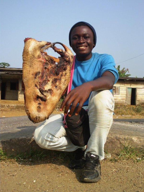 Ebola au Cameroun?