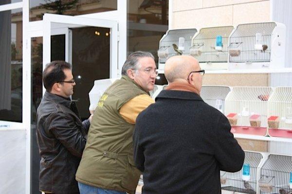 SELECTION DES JASPES POUR EXAMEN DE RECONNAISSANCE AU MONDIAL DE BARI