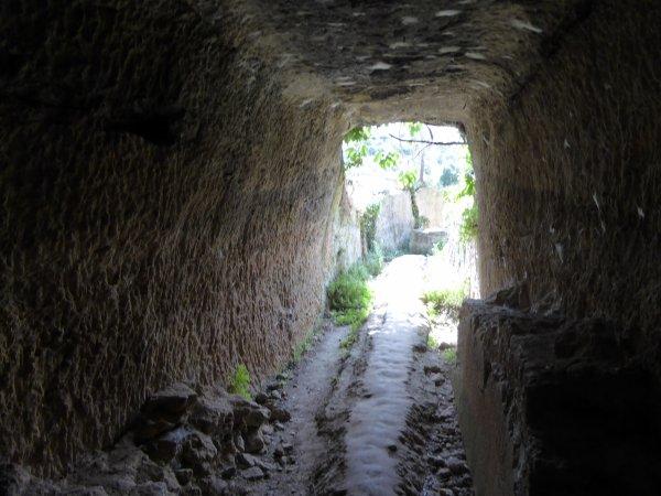 SERNHAC ROMAIN