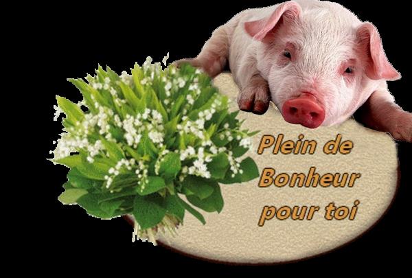 DERNIERS CADEAUX DE 1er MAI