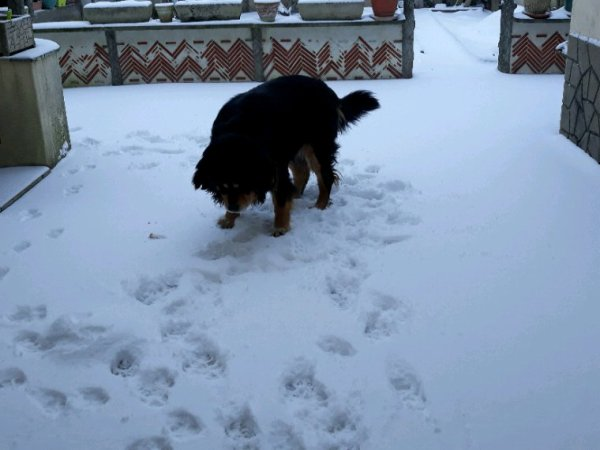 Youhou la neige