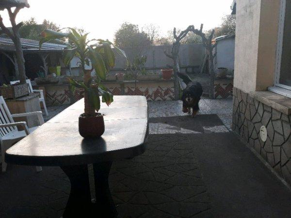 Terrasse presque prête pour les barbecues