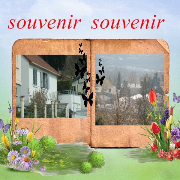 souvenir souvenir