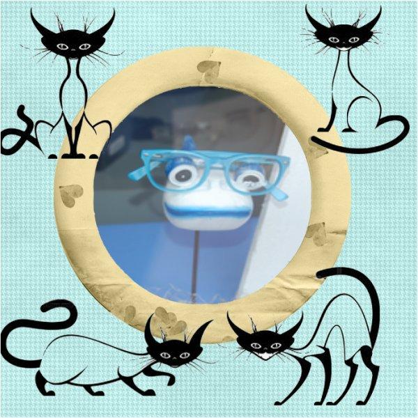 chat alors un poisson a lunette