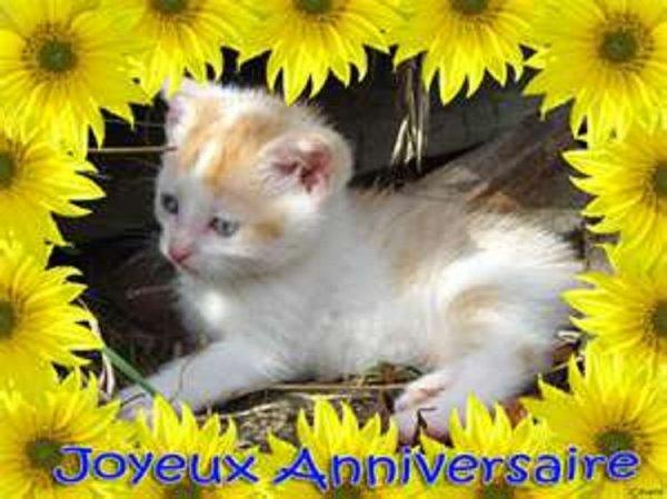 joyeux anniversaire ma lolo 19 ans aujourd'hui