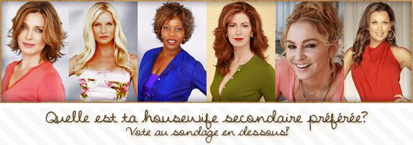 Dossier sur les housewives secondaires; bilan.