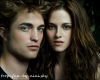 Fiction-Cullen-Story