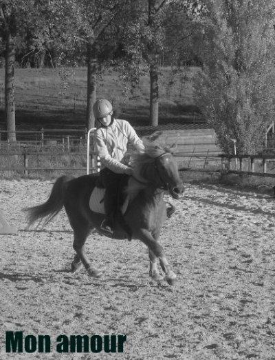 """""""Comment expliquer l'amour d'un petit poney"""" ."""