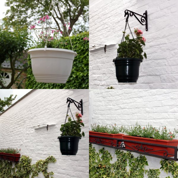 Nouvelles petites fleurs dans le jardin...!