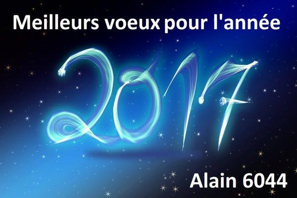 Je souhaite à tous mes Amis Skyrock une très très bonne année 2017...!