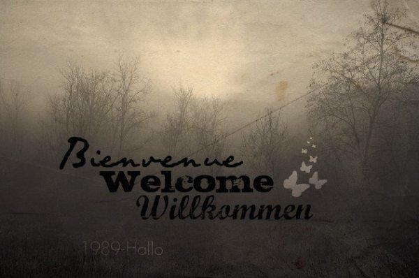 Bienvenue-Welcome-Willkommen