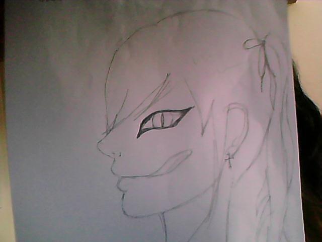 Une amie qui a dessiné ça ^^