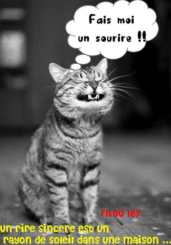 J Adore Bon Mardi Chez Filou Et