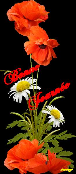 Un grand bonjour à vous toutes et tous !!A bientôt et merci pour votre gentillesse!! Nath la fiévre est tombé!!