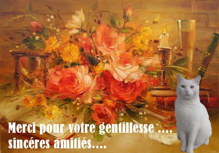 Bonjour les ami(e)s .....