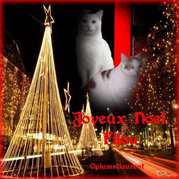 Wouaaaa notre Filou en pére Noël ......Merci Natha .....super chouette notre chéri !!