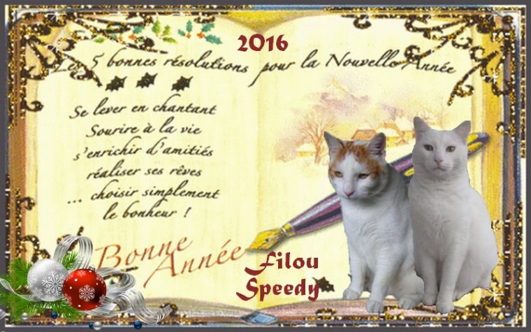 Nous vous souhaitons une année remplie de Bonheur,de Surprises,d'Amour,de Santé et pleins d'autres bonne choses pour vous et tous ceux que vous aimez....