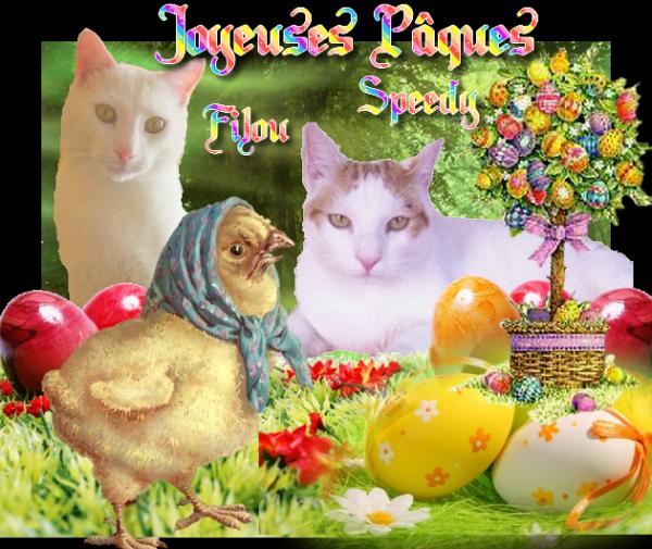 Bonne semaine sainte et bonne fête de PAQUES....