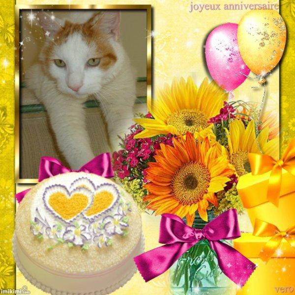Merci à Véro ....Amina-princesse Véro .....chat fait plaisir !!