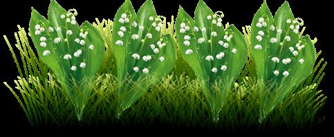 Mélodie du bonheur  Secoue secoue cette sublime petite fleur!! Ses jolies clochettes joueront pour toi la mélodie du bonheur… Grâce à elles, ton année sera enchantée, Et tous tes plus beaux souhaits seront réalisés! Joyeux 1er mai
