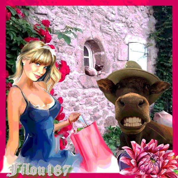 Que l'Amitié fleurisse autour de toi ....comme un parterre de fleurs!!
