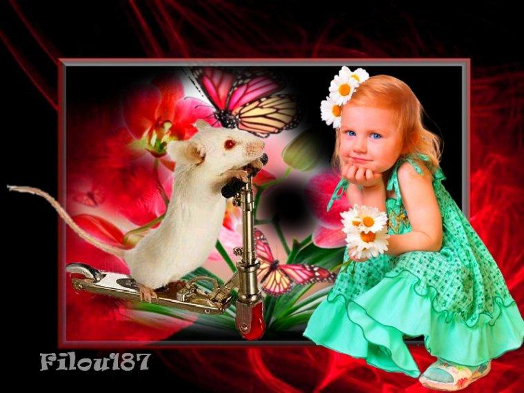 ♥♥♥Chacun admire le passé,regrette le présent et tremble pour l'avenir.....