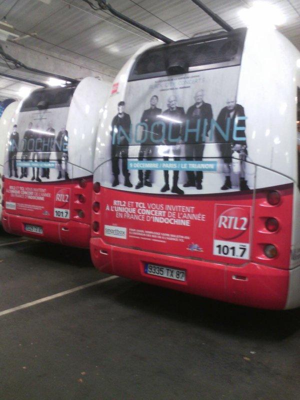 Cristalis trolleybus