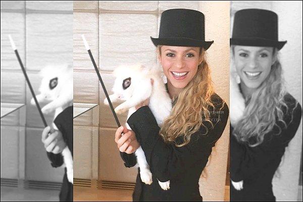 """25 Octobre 2016 : Shakira a posté une nouvelle photo d'elle sur son compte Twitter """"ABRACADABRA"""" ! S. est tout simplement adorable avec son lapin ! Elle ferait une parfaite magicienne ♥"""