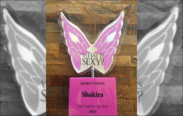 Le site Victoria's Secret a fait un classement des choses les plus sexy chez les femmes en 2013. Shakira est nommée pour ses courbes les plus sexy. Découvrez le classement en entier ici.