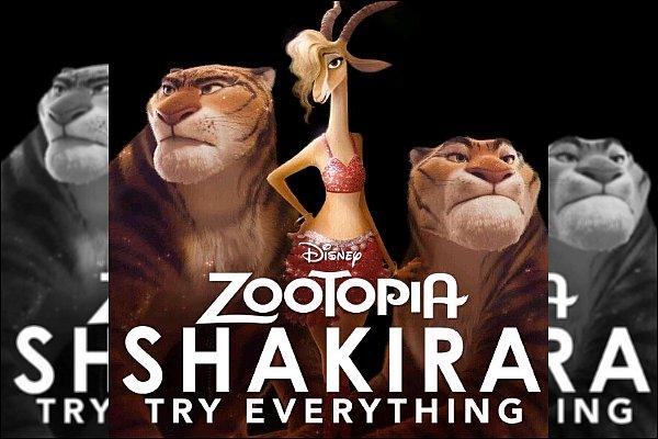 """Découvrez """"Try Everything"""" interprété par Gazelle alias Shakira dans le nouveau film Disney Zootopia. La chanson est assez sympa, elle est également utilisé pour la bande annonce du film, ça rend bien ! S. a une voix magnifique."""