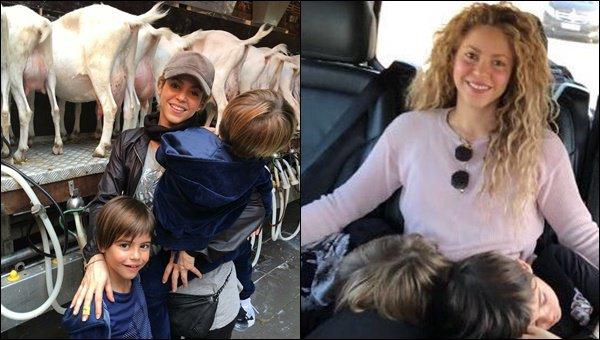 10 Juin 2018 : Shakira et les garçons ont été dans une ferme, ils ont assistés à la traite de chèvres, au Pays-Bas + Le 11/06/18, Shakira a posté une photo en compagnie de ses adorables petits bambins avant son concert à Londres