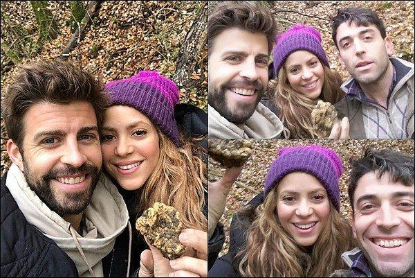 17 Novembre 2018 : Shakira et Gerard sont allés chercher des truffes blanches à Badia a Passignano en Italie Notre joli couple à partager des photos sur les réseaux sociaux. Ils ont également pris des photos avec un fan chanceux.