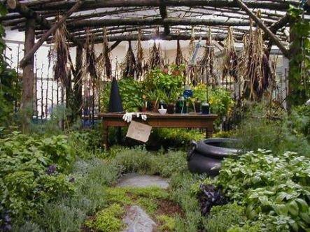 le jardin magique