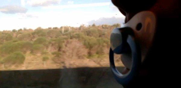 Matin tranquille dans le TGV