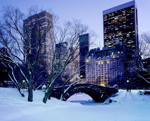 New York (L)