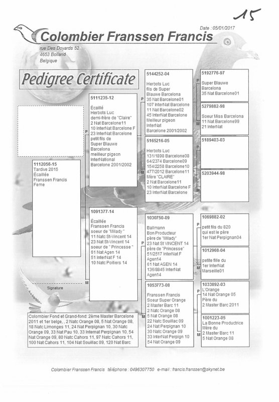 pedigrees p3