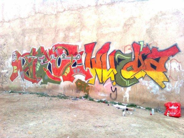 """new Graffiti by """"GFC"""" 2010"""