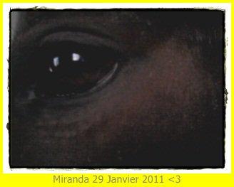 Le 29 Janvier 2011 ♥
