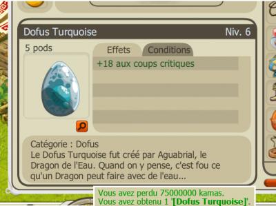 Achat d'un 9 eme Dofus Turquoise