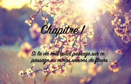 """""""Si la vie n'est qu'un passage,sur ce passage au moins,semons des fleurs""""Chapitre 1"""