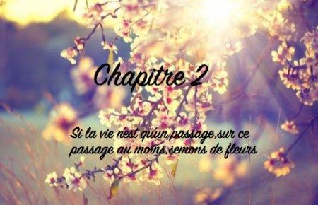 """""""Si la vie n'est qu'un passage,sur ce passage au moins,semons des fleurs""""Chapitre 2"""