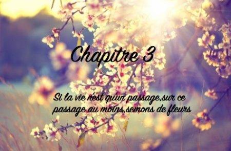 """""""Si la vie n'est qu'un passage,sur ce passage au moins,semons des fleurs""""Chapitre 3"""