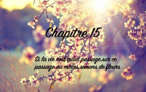 """Chapitre 15 """"Si la vie n'est qu'un passage,sur ce passage au moins,semons des fleurs """""""
