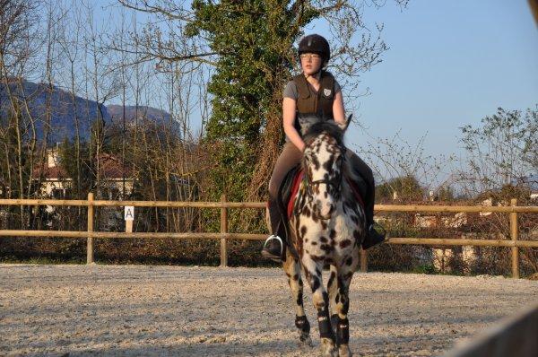 """""""Lance ton coeur par dessus l'obstacle et le cheval suivra..."""""""