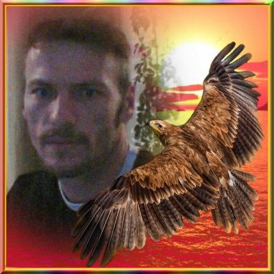 l'aigle et l'homme