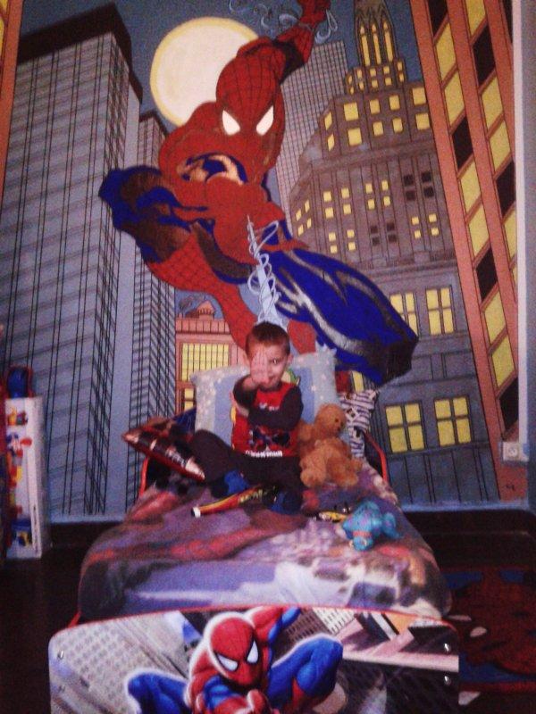 Peinture Mural Spiderman