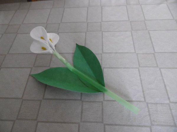 Des fleurs d'Arum avec des cotons à démaquiller