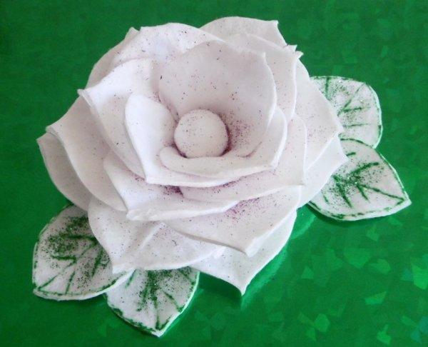 Une rose avec des cotons à démaquiller